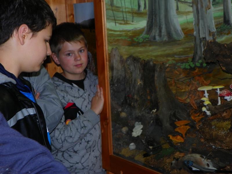 Felsőtárkány-Látogatóközpont